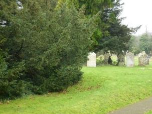 Piddletrenthide churchyard